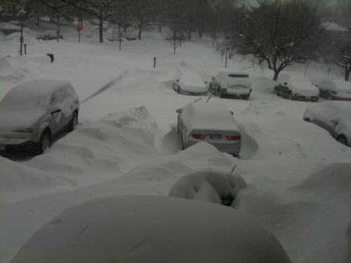 Snowpacalypse part deux2