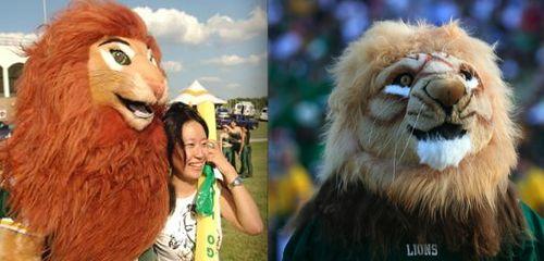 Mssu lion fag ferocious