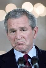 Bush_nov_8_2006